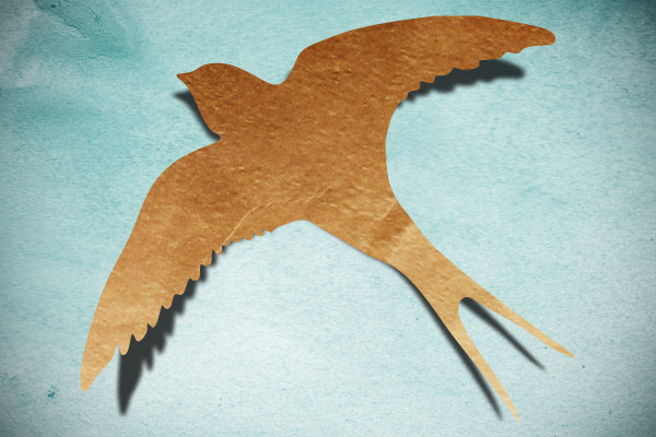 Paper swallow