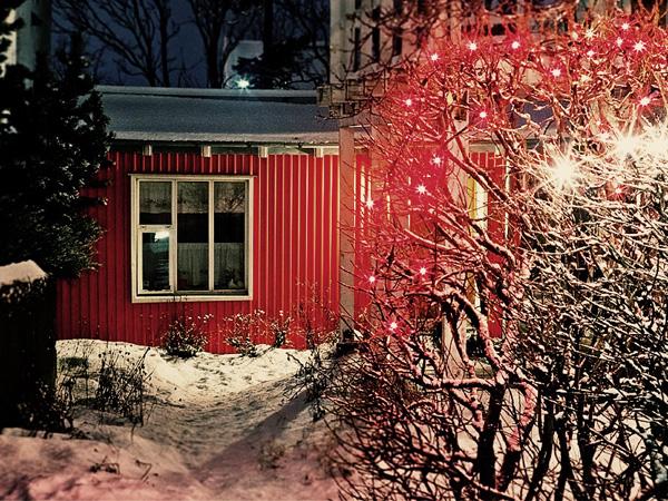 Reykjavík Yuletide I