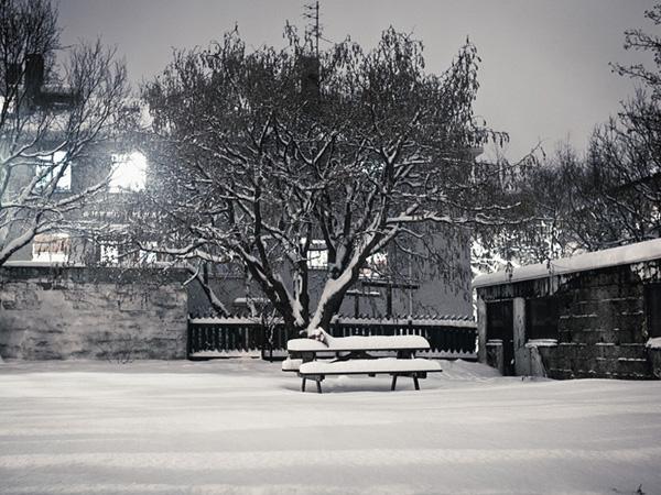 Scenes from snowy Vesturbær II