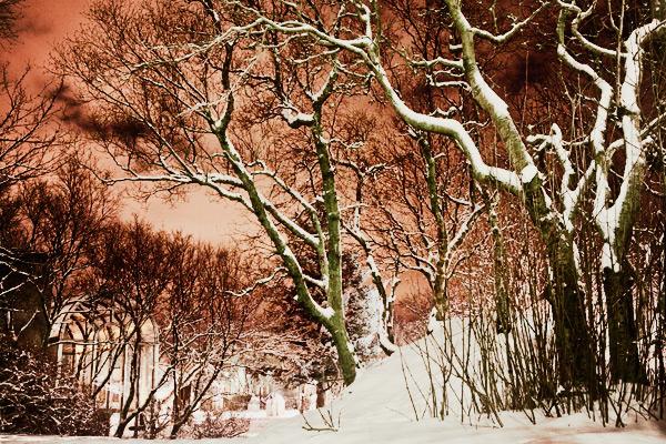 Iceland Chronicles Photo Tips