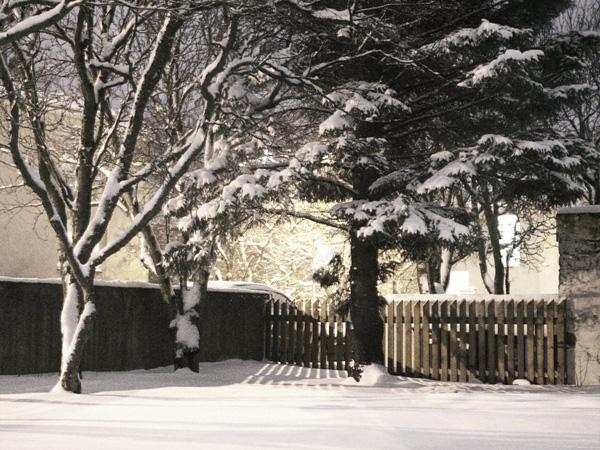 Scenes from snowy Vesturbær I